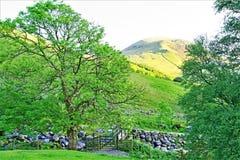 Die goldene Stunde, an Wasdale-Kopf, See-Bezirk, Nordwesten, England stockbilder
