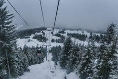 Die Gondel, die oben Schnee geht, bedeckte Berg zwischen Bäumen stockbilder