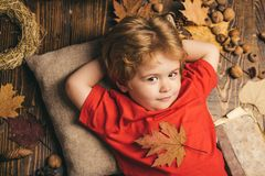 Die größten Rabatte während alles Herbstes kleidet für Kinder Netter kleines Kinderjunge werden zum Herbst fertig Kinderlügen stockfotografie