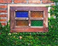 Die grüne Kriechpflanze-Anlage auf Wand und Fenster Lizenzfreies Stockbild