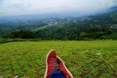 Die grüne Landschaft allein schauen Stockbild