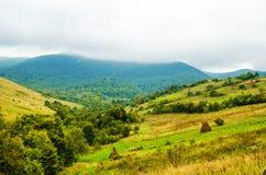 Die grünen Berge Stockbild