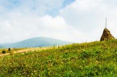 Die grünen Berge Stockfotos