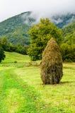 Die grünen Berge Lizenzfreies Stockfoto