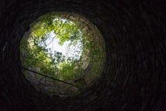 Die Grünniederlassungen, die auf die Oberseite des Steinturms wachsen, sehen wie kleiner Planet aus Lizenzfreie Stockbilder