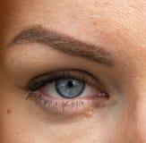 Die grauen Augen der Frauen betrachten aus n?chster N?he lizenzfreies stockfoto