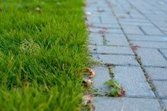 Die Grenze zwischen Rasen und Pflasterung stockfoto