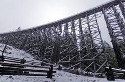 Die großartige alte Koksilah-Gestellschnittansicht am schneebedeckten Tag Stockfotos