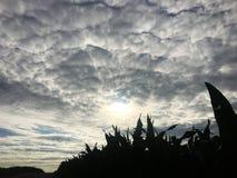 Die großartigen Wolken sind über der deutschen Landschaft Stockbild
