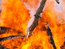 Die große Flamme lizenzfreie stockbilder