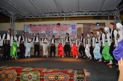Die Gruppe von Bosniern auf Stadium Lizenzfreie Stockbilder