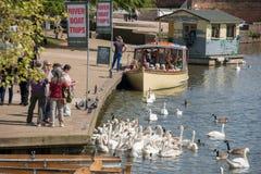 Die Gruppe von Personen, die Schwäne mit einem Zeichen im Hintergrundwerbungs-Flussboot einzieht, löst aus lizenzfreie stockbilder