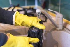 Die Hände der Frauen in den Schutzhandschuhen waschen den Lappen unter dem Hahn Stockfotografie