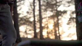 Die Hände der Männer hacken Brennholz mit einer Axt in der untergehenden Sonne 3840x2160 stock video
