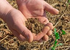 Die Hände des Mannes, die im Frühjahr Feld des Bodens halten Abschluss oben stockfotos