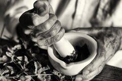 Die Hände eines Kräuterkenners, der eine neue Formulierung vorbereitet Lizenzfreies Stockbild