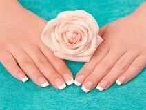 Die Hände und die Nägel der Schönheit mit französischem erregtem lizenzfreie stockbilder