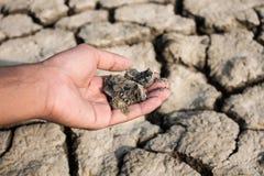 Die Hände und die Würfel der Boden ist Dürre Stockfotografie