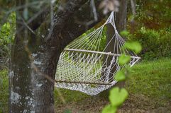 Die Hängematte, die im Baum hängt Lizenzfreies Stockfoto
