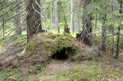 Die Höhle des Bären Lizenzfreie Stockfotos
