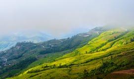 Die Hügel im Nebel. Landschaft bei Phu Tupberg, Thailand Lizenzfreies Stockbild