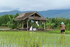 Die Hütte des Landwirts Lizenzfreie Stockfotos