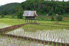 Die Hütte des Landwirts Lizenzfreie Stockfotografie