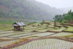 Die Hütte des Landwirts Stockfotos