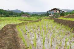 Die Hütte des Landwirts Stockbild