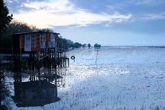 Die Hütten errichtet in der Mangrove Stockbilder