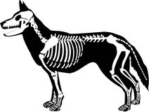 Die Halloween-Auslegungen vektor abbildung