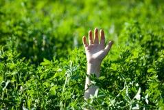Die Hand ausgedehnt von einem Gras Lizenzfreie Stockfotografie