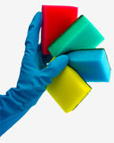 Die Hand in den blauen Handschuhen, die farbiges spong anhalten Lizenzfreie Stockfotos