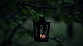 Die Hand der Frau beleuchtet eine Kerze auf Kerzenlaterne im Wald stock video