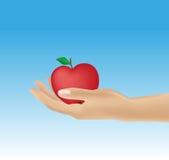 Die Hand der Frau, die Apfel gibt Stockfotografie