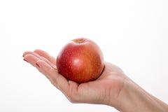 Die Hand der Frau, die an eine Handvoll des roten Apfels hält Stockfotografie