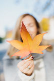 Die Hand der Frau, die orange Herbstblatt hält Stockbild