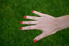 Die Hand der Frau mit rotem Lack Stockbild