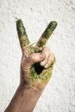 Die Hand, die mit Gras schmutzig ist, macht Siegeszeichen Stockfotografie