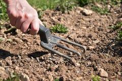 Die Hand einer Frau justiert den Boden, um Sämlinge zu pflanzen Hand, die Gartenarbeitwerkzeug hält stockbilder
