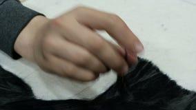 Die Hand eines Jugendlichen funktioniert mit Filz Nadel für die Herstellung von Malereien von der Wolle Anfüllen des schwarzen ge stock video footage