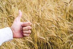 Die Hand zeigt das Zeichen wie wegen einer guten Ernte Stockfoto
