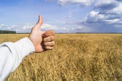 Die Hand zeigt das Zeichen wie wegen einer guten Ernte Stockbilder