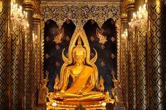 Die Haupthalle von Wat Thardtong mit goldener Buddha-Statue Wat Ya Stockfotografie