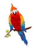 Die Hauptrolle spielender Papagei Stockfotos