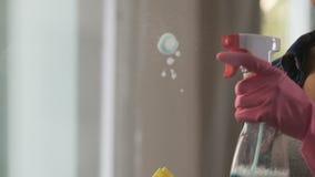 Die Hausfrau, die auf Gläser sprüht, taucht spezielles Reinigungsmittel und abwischend auf stock video