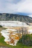 Die heiße Quelle Yellowstone Mammonth Lizenzfreie Stockfotos