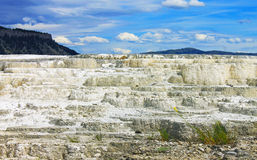 Die heiße Quelle Yellowstone Mammonth Lizenzfreie Stockbilder