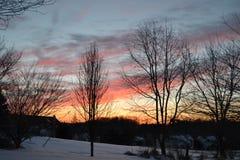 Die helle rote Sonne über Oberseiten der Pelzbäume Lizenzfreie Stockfotografie