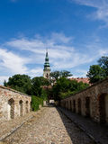 Die Henrykow alte Abtei Lizenzfreies Stockfoto